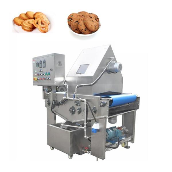 Dsm-Automatic Cookie Biscuit Production Line #1 image