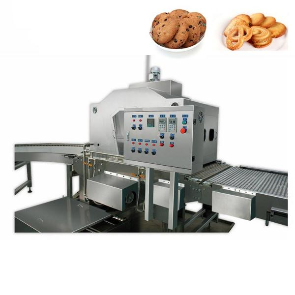 Dsm-Automatic Cookie Biscuit Production Line #2 image