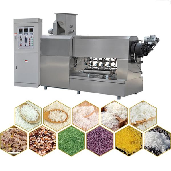 Nutritional Artificial Rice Making Machine Made in Machine #1 image